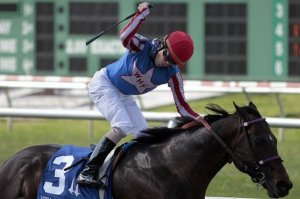 Horse whipped by jockey during race