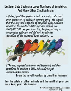 Infographic about harm outdoor cats do to songbirds and other small animals.