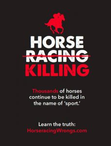 Horseracing protest at Saratoga Racetrack Sat July 23 2016 11am to 1pm