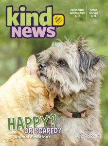 Red Rover's Kind News magazine