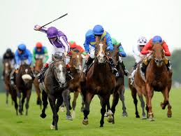 Horse being whipped during the race.