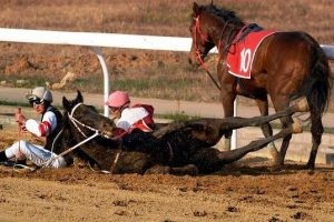 Horse down and injured on race track.