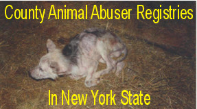 Animal Abuser Registries in New York State