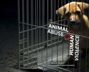 abused dog in cage
