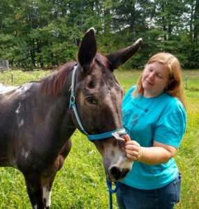 Colleen Segarra of Equine Rescue Resource with Randy